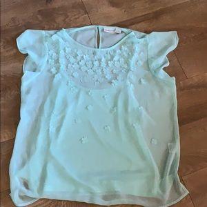 Liz Claiborne mint green blouse sz Large sheer
